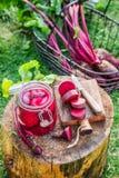 Barbabietole inscatolate casalinghe di estate Fotografia Stock Libera da Diritti