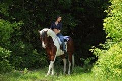 Barbacka ritt för härlig cowgirl hennes häst i trän arkivbild