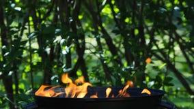Barbacoa ardiente en jardín almacen de video