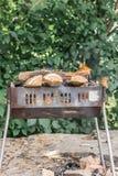 Barbacoa con la leña ardiente para cocinar la comida asada a la parrilla en el b imagen de archivo libre de regalías