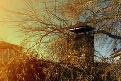 Barbacoa de la chimenea en una cerca viva en otoño imagen de archivo
