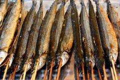 Barbacoa de los pescados Fotografía de archivo