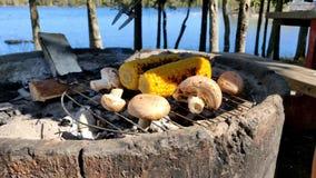 Barbacoa del maíz y de la seta negra en el horno concreto calentado carbón de leña en un día soleado hermoso al lado de un lago almacen de video