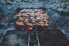 Barbacoa del verano con el pollo cena Fotografía de archivo