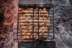 Barbacoa del verano con el pollo cena Imágenes de archivo libres de regalías