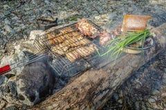 Barbacoa sobre un fuego con las verduras y el pan durante una comida campestre Imagen de archivo