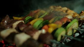 Barbacoa y verduras en la parrilla almacen de video