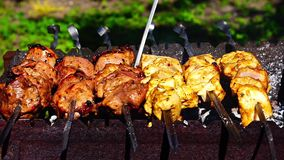 Barbacoas de los kebabs del pollo y de la ternera en parrilla metrajes
