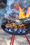 Barbacue fire Stock Image