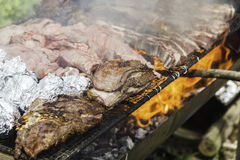 Barbacue. Meat in the hot grill Royalty Free Stock Photography