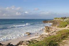 barbadian shoreline2 Royaltyfria Foton