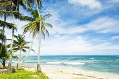 Barbados. Martin's Bay in Barbados, Caribbean Stock Image