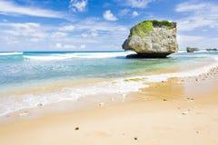 Barbados. Bathsheba on East coast of Barbados, Caribbean Stock Images
