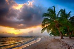 Barbados stockbild
