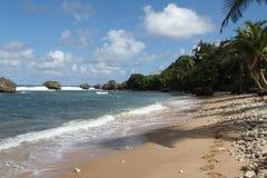 Barbados Beach Stock Photos
