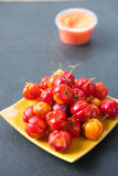 The Barbados cherry Royalty Free Stock Photos