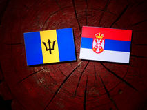 Barbados flag with Serbian flag on a tree stump isolated. Barbados flag with Serbian flag on a tree stump stock image