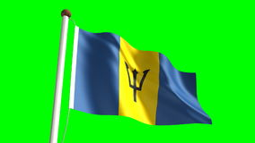 Barbados flag stock video