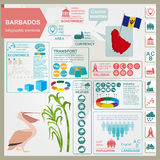 Barbados infographics, statistical data, sights. Pelican, sugarc Royalty Free Stock Images