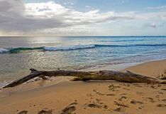Barbados North West Coast showing the calm blue waters of the Caribbean sea Stock Photo