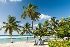 Barbados Stock Images