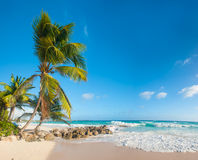 Barbados Royalty Free Stock Image