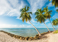 Barbados Royalty Free Stock Photography