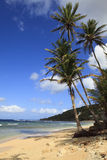 barbados piękny plażowy Fotografia Royalty Free