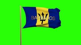 Barbados señalan por medio de una bandera con el título que agita en el viento libre illustration