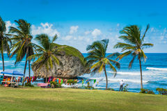 Barbados Shore Line in the Caribbean Stock Image