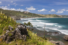 Barbados Shoreline. View of the eastern coast of Barbados showing the beach at Bathsheba. Focus on foreground Stock Photography
