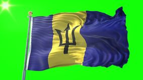 Barbados sjunker den sömlösa kretsa videoen för tolkningen 3D Härligt vinka för ögla för textiltorkduketyg
