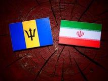 Barbados sjunker med den iranska flaggan på en isolerad trädstubbe Royaltyfri Bild