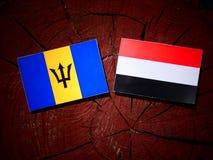 Barbados sjunker med den jemenitiska flaggan på en trädstubbe Arkivfoto