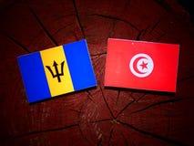 Barbados sjunker med den tunisiska flaggan på en isolerad trädstubbe Royaltyfria Foton
