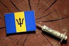 Barbados sjunker på en stubbe med injektionssprutan som injicerar pengar Fotografering för Bildbyråer