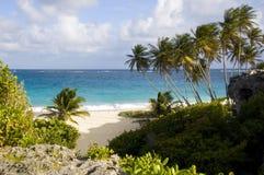 barbados zatoki dno fotografia royalty free