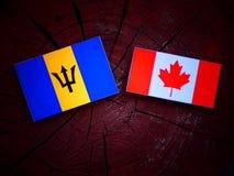 Barbados zaznaczają z kanadyjczyk flaga na drzewnym fiszorku odizolowywającym obraz stock