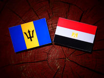 Barbados zaznaczają z egipcjanin flaga na drzewnym fiszorku Zdjęcia Stock