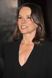 Barbara Hershey Royalty Free Stock Photography