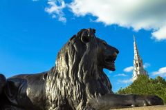 Barbary lion at Trafalgar Square, London. Statue of a lion near the Nelson column at Trafalgar Square in London. UK Royalty Free Stock Photography