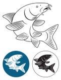 Barbeau de poissons Photos libres de droits