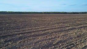 Barbecho de mentiras cosechado y arado del campo contra bosque almacen de video