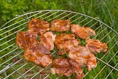 Barbecue. The prepared barbecue Royalty Free Stock Image