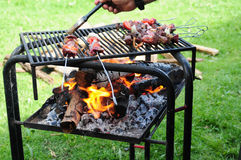 Barbecue. Royalty Free Stock Image