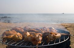 Barbecue. Preparation of a barbecue from the hen on seacoast Stock Images