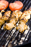Barbecue. Meat on skewers cooking on the grill Royalty Free Stock Photos