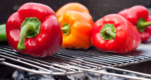 Free Barbecue Royalty Free Stock Photo - 18545555
