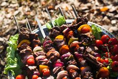 Barbecue. With meat and fresh vegetables royalty free stock photos