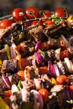 Barbecue. With meat and fresh vegetables closeup Stock Photos